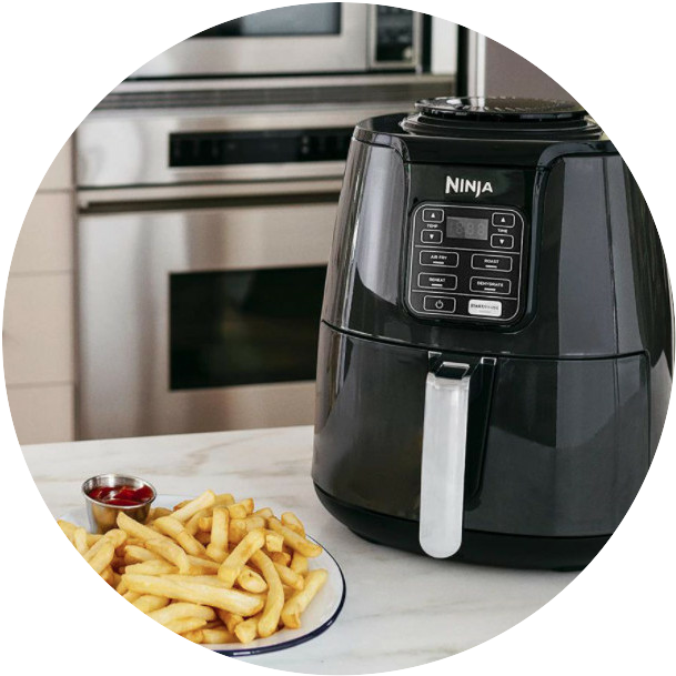 ninja air fryer french fries